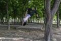 Azadi Park 2020-04-10 03.jpg