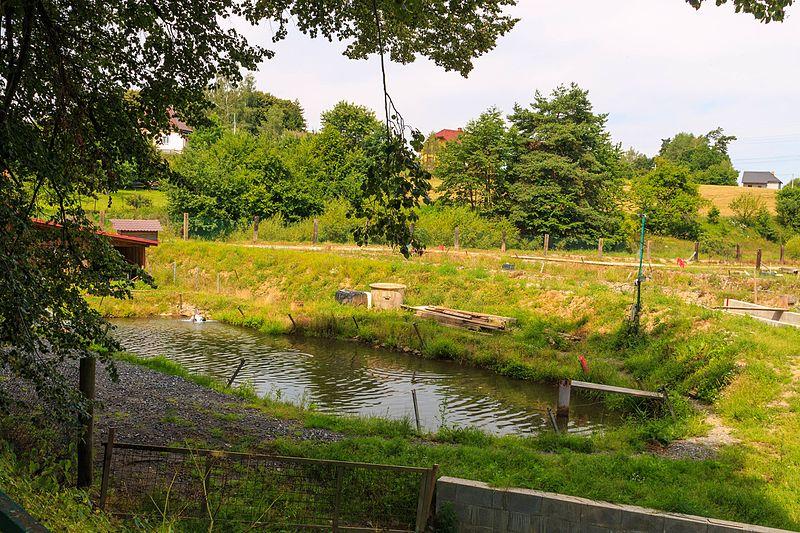 File:Břevnice rybníček.jpg