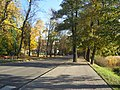 BARLINEK ul.Strzelecka - panoramio.jpg