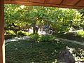 Balboa Park Japanese Garden 5.JPG