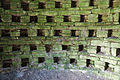 Ballybeg Priory St. Thomas Columbarium Nesting Boxes 2012 09 08.jpg