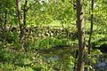 Bamberg Bughof Ludwig-Donau-Main-Kanal D-4-61-000-1520 002.JPG