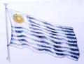 Bandera 1828 a colores (2).png