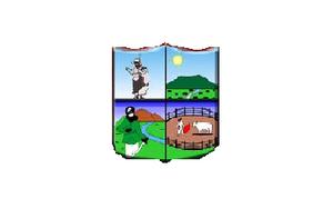 Paraguarí - Image: Bandera Municipalidad de Paraguarí