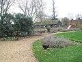 Bantams within Staunton Country Park - geograph.org.uk - 1594992.jpg