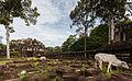 Baphuon, Angkor Thom, Camboya, 2013-08-16, DD 07.jpg