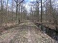 Barnbruch 04.04.2010 - panoramio - Christian-1983 (9).jpg