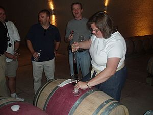 Wine barrel sampling