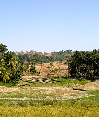 Baucau fields.jpg
