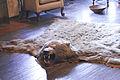 Bearskin rug2.jpg