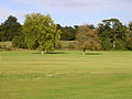 Beaulieu Cricket Club, Beaulieu, New Forest - geograph.org.uk - 62596.jpg