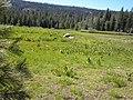Bell Beadows - panoramio.jpg