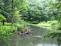 Bendigo State Park.jpg