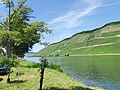 Bernkastel-Kues, Germany - panoramio (78).jpg
