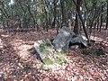 Beton in het bos (30533456653).jpg