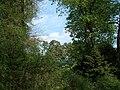 Bila Tserkva, Kyivs'ka oblast, Ukraine - panoramio (65).jpg