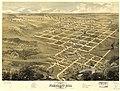 Bird's eye view of the city of Pleasant Hill, Cass Co., Missouri 1869. LOC 73693487.jpg