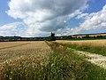 Blick auf Neuhof - panoramio.jpg