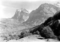 Blick auf das Dorf Grindelwald - CH-BAR - 3240864.tif