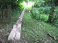 Boardwalk or long footbridge near Town Farm - geograph.org.uk - 1357094.jpg