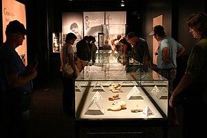Body Worlds - Gunther von Hagens' Body Worlds, San Diego, California, 2009