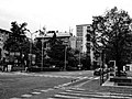Bolzano City Image - Photo by Giovanni Ussi - In Black and White 7.jpg