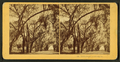 Bonaventure, Savannah, Ga, from Robert N. Dennis collection of stereoscopic views.png