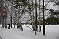 Borskiy r-n, Nizhegorodskaya oblast', Russia - panoramio (17).jpg