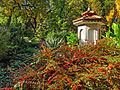 Botanička bašta Jevremovac, Beograd - jesenje boje, svetlost i senke 24.jpg