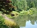 Botanischer Garten am Hainteich in Bamberg - geo.hlipp.de - 13773.jpg