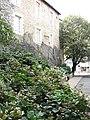 Boulevard Carnot, Angers, Pays de la Loire, France - panoramio.jpg