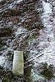 Boundary stone 29 - geograph.org.uk - 652700.jpg