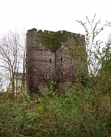 A small, ruined castle of rough stone comprising two connected, castellated towers, partly covered in ivy, surrounded by much vegetation. Numerous arrowslits indicate the walls to be three to four storeys tall. The upward direction of the image suggests that the castle is at the top of a hill
