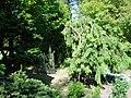 Bressingham Steam and Gardens 18.jpg