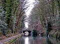 Bridge 81, Grand Union Canal - geograph.org.uk - 1255685.jpg