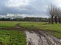 Bridleway, Ruscombe - geograph.org.uk - 1048299.jpg