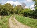 Bridleway by Waterperry Wood - geograph.org.uk - 1288906.jpg