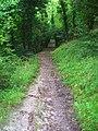 Bridleway to Poynings - geograph.org.uk - 958116.jpg