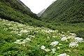 Brookvalley to the pass Chyargo La. - panoramio.jpg