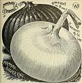 Burpee's farm annual 1893 (1893) (20322709128).jpg
