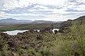 Butcher Jones Trail to Pinter's Point Loop, Tonto National Park, Saguaro Lake, Ft. McDowell, AZ - panoramio (15).jpg