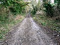 Byway to the Cotswold Way, near Prestbury - geograph.org.uk - 1121867.jpg