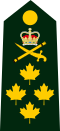 CDN-Army-Gen-Shoulder.svg