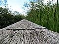 CINLB - 20120909 - Garde.JPG
