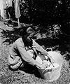 COLLECTIE TROPENMUSEUM Een baboe lid van het huispersoneel van de familie C.H. Japing in Palembang tijdens het wassen van kleding TMnr 60051196.jpg