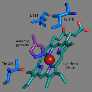 CYP2E1 - Selected residues in the active site of CYP2E1. Created using 3E4E (bound to inhibitor 4-methyl pyrazole)