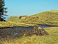 Cairn by the Bay River - geograph.org.uk - 1233056.jpg