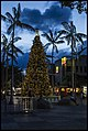 Cairns Christmas Tree-1 (15815160330).jpg