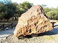 Campo del Cielo meteorite, El Chaco fragment, N.jpg
