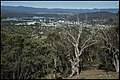 Canberra Civic Centre from Mt Ainslie-1 (38455840331).jpg
